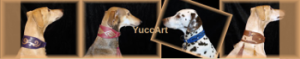 yuccart_banner_alte_website_small