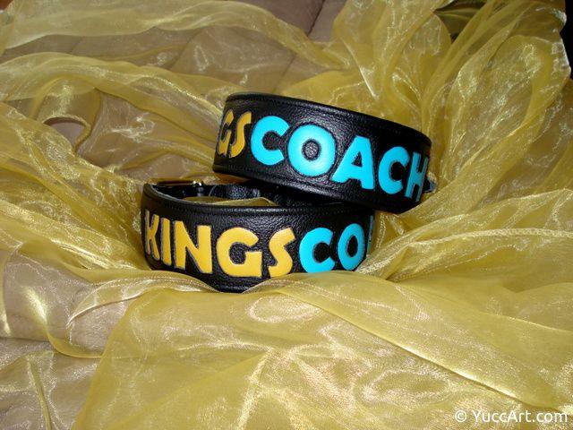 20150617-schriftzug_kingscoach_1-dsc04683